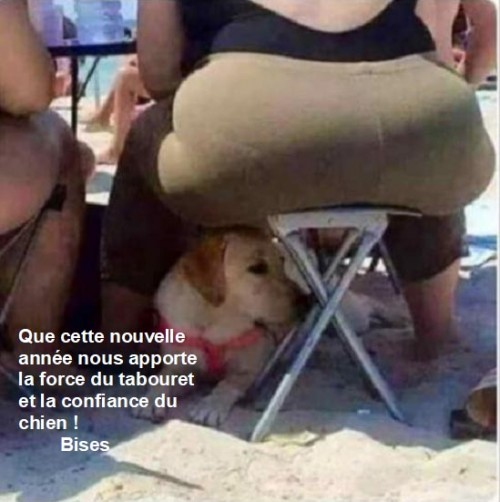 thumbnail_bonne-annee-humour.jpg